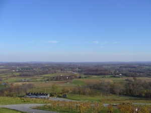 Bluemont Vineyard View